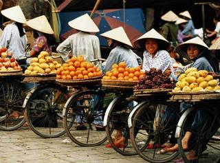 vietnamesefarmer.jpg